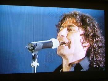Luciano Ligabue, 2006